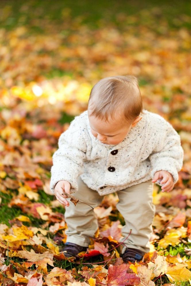 autumn-163913_1280